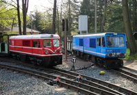 Two trains at zoo station